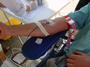 krwioda