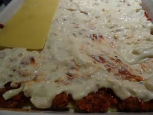 lasagne robocze (4)