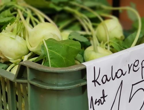 Świeże warzywa bez chemii na pikniku bezglutenowym