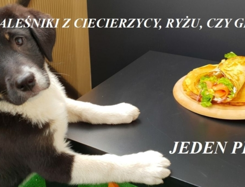 Naleśniki z ciecierzycy czy ryżu- jeden pies…