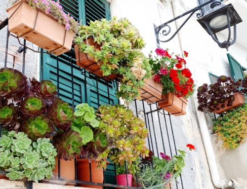 Bezglutenowe wakacje we Włoszech – co warto kupić